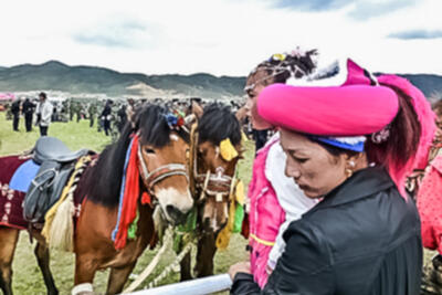 Tibetan horse racing in Shangri-la