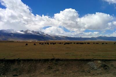 Shangri-la to nowhere: A week on the edge of Tibet, part 2