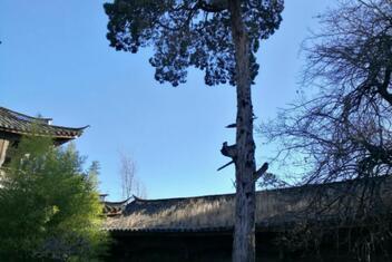 Baisha Traditional Naxi Culture Center